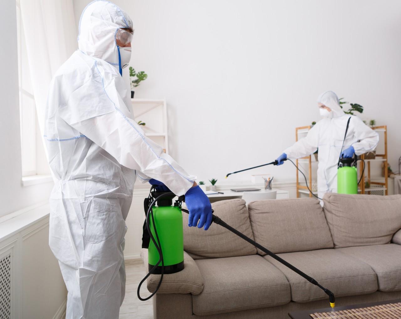 Coronavírus: saiba como eliminar vírus e bactérias dos ambientes